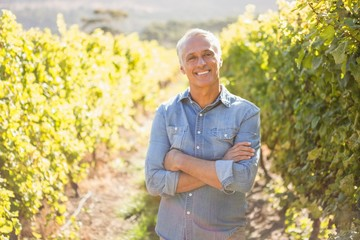Happy vintner with crossed arms