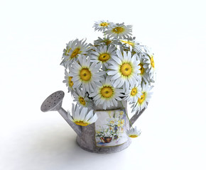 Bouquet of Daisies in a Bucket 3D