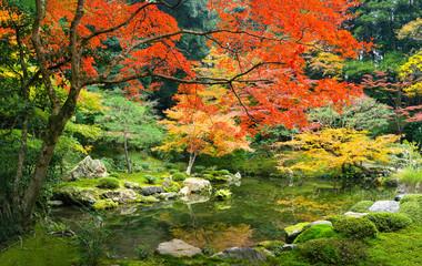 Wall Mural - Japanischer Garten im Herbst