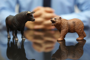 businessman is watching bull and bear , concept of stock market