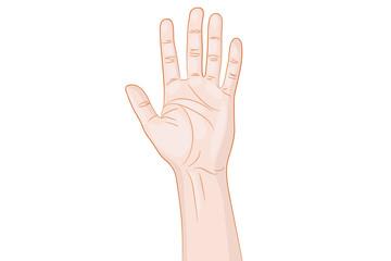 Greeting Hand Gesture