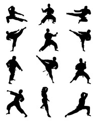 Black silhouettes of karate fighting, vector