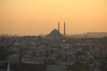 blue mosque at golden hour