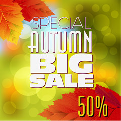 Autumn Sales Design