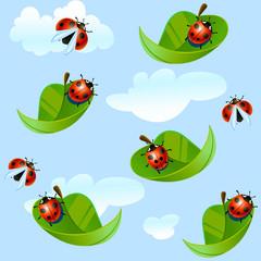 ladybug fly on a leaf