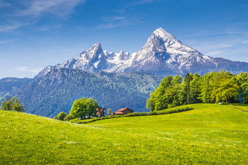 Wall Mural - Idyllic landscape in the Alps with green meadows and farmhouse