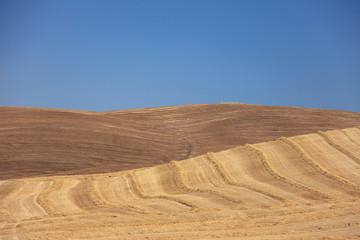 Val d'Orcia campi arati