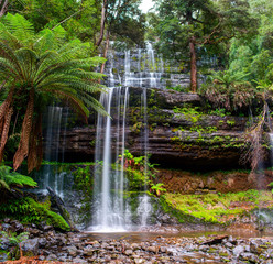 The Russell Falls, a tiered–cascade waterfall on the Russell Falls Creek.Tasmania, Australia