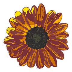 Seamless background with brown sunflowers. Vector illustration.