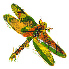 Zentangle stylized dragonfly with abstract colorful grunge