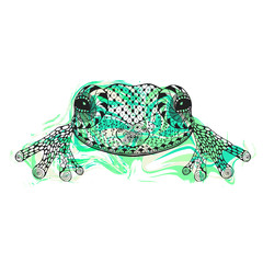Zentangle stylized frog with abstract colorful grunge background