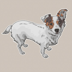 Vector illustration of the dog. black and white