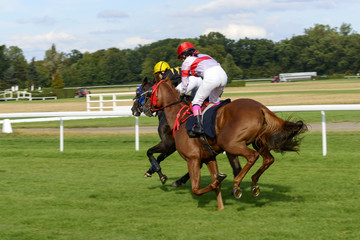 Jockey on a horse galloping to the finish of the race.