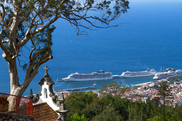 Fototapete - View of Funchal from the Monte. Madeira Island, Portugal