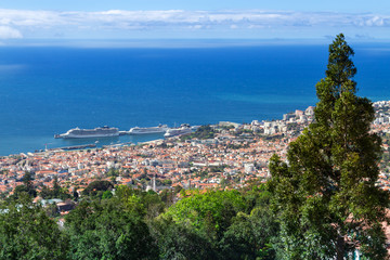 Fototapete - View of Funchal, Madeira, Portugal