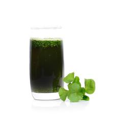 Centella asiatica, Asiatic Pennywort,Herbal Drink. Has medicinal