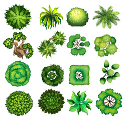 Top view of different kind of plants
