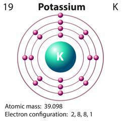Diagram representation of the element potassium