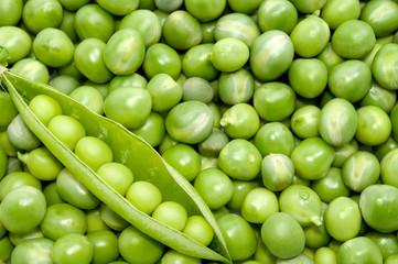 Fresh green pea pod on peas background