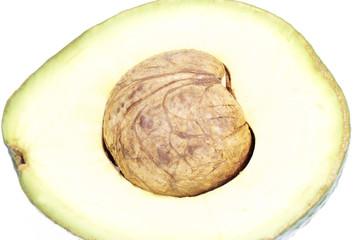 Avocado closeup on white background
