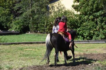 cavallo bambini a cavallo pony equitazione