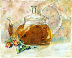 Watercolor black  tea  in glass  teapot