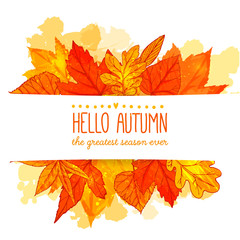 Hello autumn banner with orange and red hand drawn leaves