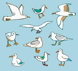 set of handdrawn seagulls