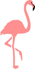 Real pink Flamingo