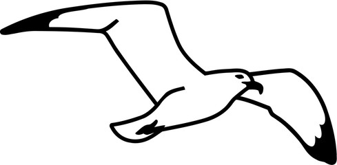 Seagull hand drawn