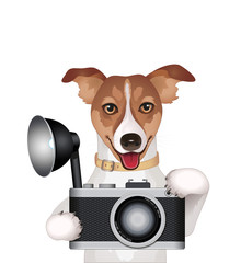Dog with a camera,