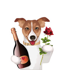 Dog with champagne and rose Vector illustration isolated on white background