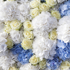 beautiful and delicate bouquet of white rose and blue buttercups