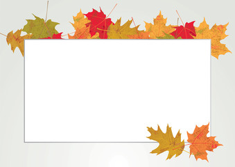 Autum Leaves Copyspace Border Illustration