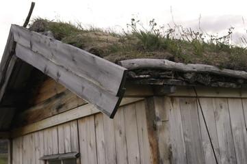 фрагмент норвежской зеленой крыши