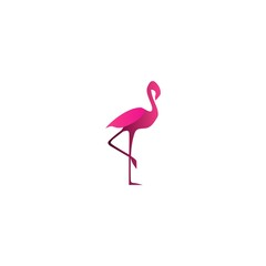 Flamingo Vector Template