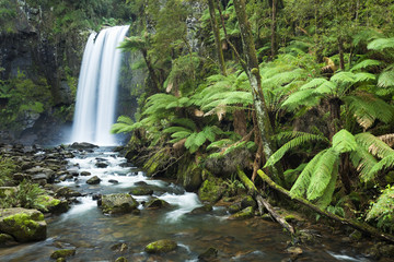 Fotorolgordijn Jungle Rainforest waterfalls, Hopetoun Falls, Victoria, Australia