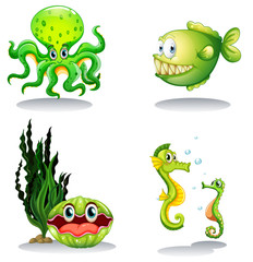 Sea animals in green color
