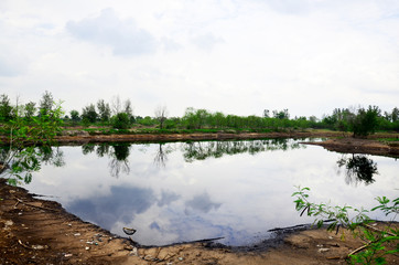 Reflection and Effects Environmental from Water contaminated wit