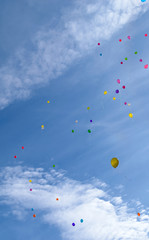 Many colored balloons fly in the blue sky with clouds