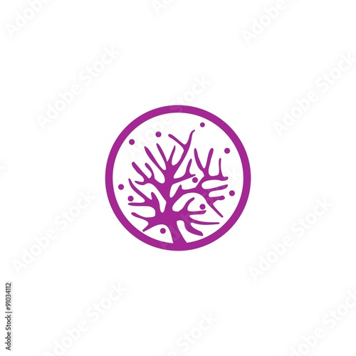 coral and star fish vector template stock image and royalty free