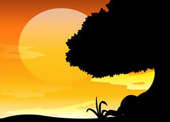 Silhouette scene at sunset