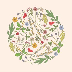 Cute postcard. Botany. Around  vintage floral motif.