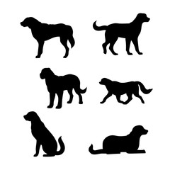 Breed of a dog St. Bernard vector silhouettes.