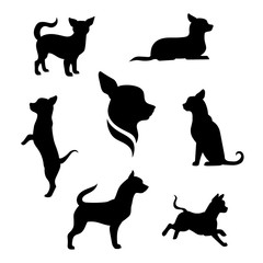 Chihuahua dog vector silhouettes.