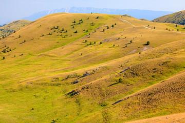 Verdi colline sinuose