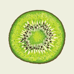 Kiwi Slice Vector