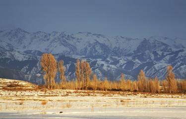 Mountains near Grigorievka. Kyrgyzstan
