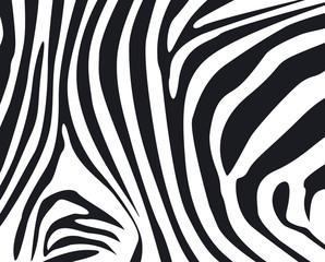 zebra skin textured background