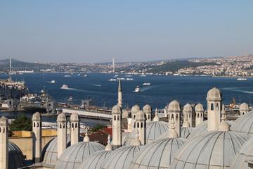 View of the Bosphorus (new)